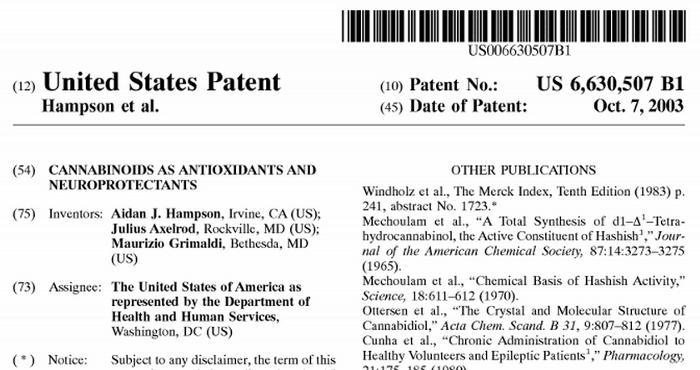 Czy rząd USA posiada patent na marihuanę?, JamaicaSeeds.pl