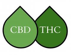 Optymalna dekarboksylacja CBD i THC przez ciepło, JamaicaSeeds.pl