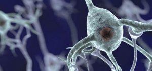 Terapia z użyciem CBD zmniejsza oporne na tradycyjne leczenie napady padaczkowe, JamaicaSeeds.pl