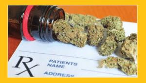 Niemcy: Jak było zanim zalegalizowano medyczną marihuanę?, JamaicaSeeds.pl