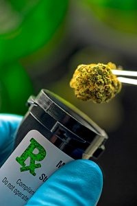 Cannabis dla dzieci, JamaicaSeeds.pl