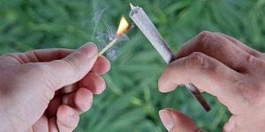 Cannabis przy reumatyzmie: eksperci odradzają, JamaicaSeeds.pl