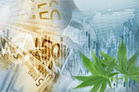 Dlaczego warto inwestować w akcje cannabisowe?, JamaicaSeeds.pl
