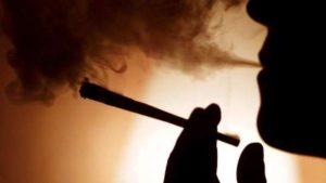 Cannabis przewiw uzależnieniu?, JamaicaSeeds.pl