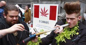 British Columbia (Kanada) i jej prawo cannabisowe, JamaicaSeeds.pl