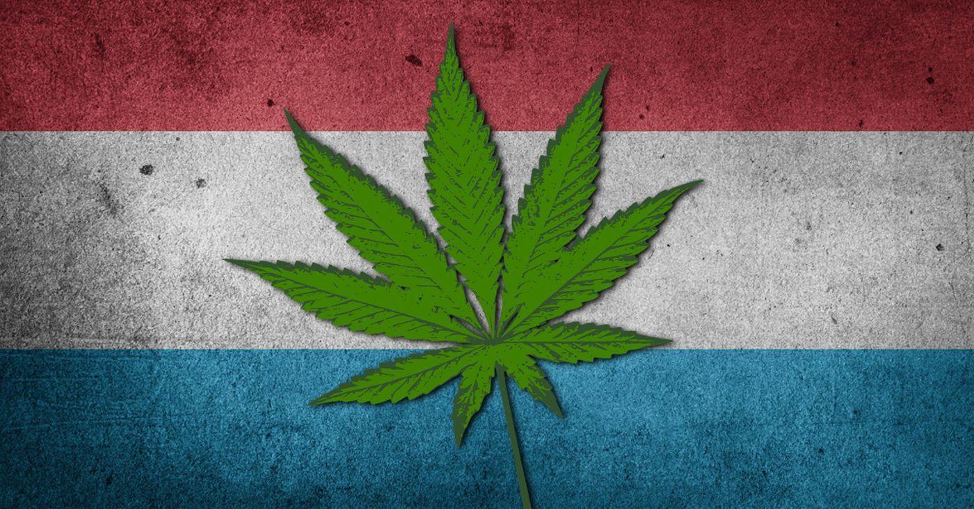 Luksemburg Chce Zalegalizować Konopie Indyjskie Dopiero za Dwa Lata, JamaicaSeeds.pl